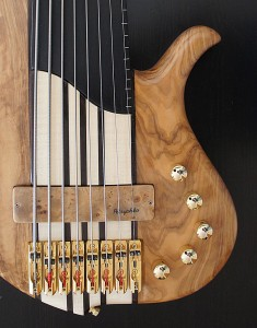 Basse luthier Petrychko