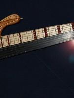 Basse frettée fretless 10 cordes
