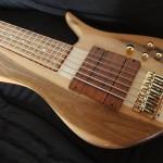 Basse électrique Luthier Petrychko