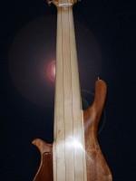 Basse 10 cordes luthier Petrychko