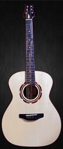 guitare acoustique petrychko