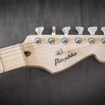 guitare électrique Petrychko