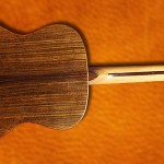 Guitare luthier Petrychko